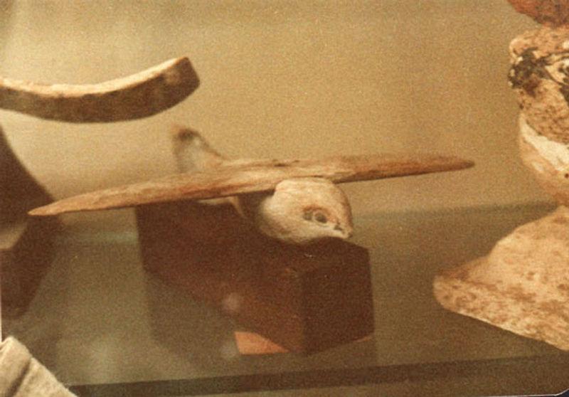 L'oiseau de Saqqarah, un planeur égyptien vieux de 2 100 ans 800px-Photo_1-plane_front_view1